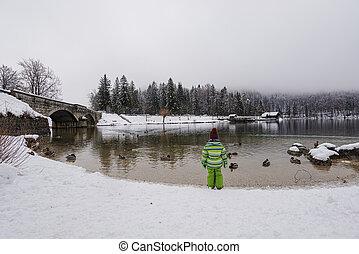 klage, kind, ufer, bedeckten grün, kleinkind, winter, stehende , see, schnee