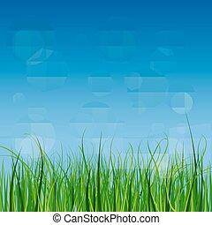 klar, og, saftige, grønnes græs, på, en, blå himmel, baggrund.