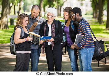 klasgenoten, opmerkingen, student, senior, het bespreken, campus