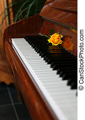 klasik, klavír