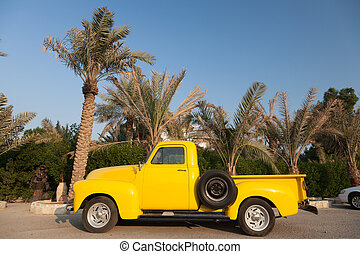 klassisch, bäume, chevy, kleinlieferwagen, gelber , unter, handfläche