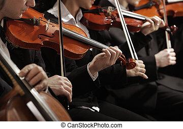 klassisch, music., geiger, in, concert