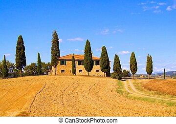 klassisk, tuscan, landskap, italien