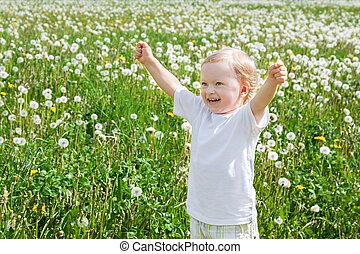 klein kind, de, jongen, toneelstukken, op, een, groene weide, met, paardebloemen