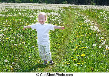 klein kind, de, jongen, toneelstukken, op, een, zomer, weide