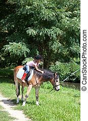 klein meisje, het petting, een, paarde, terwijl, horseback rijden