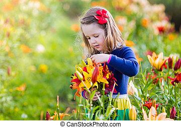 klein meisje, pluk, lilly, bloemen