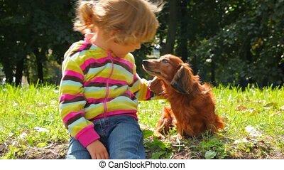 klein meisje, stroking, dog, in park, het verbergen, dog