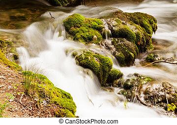 klein, wald, kaskade, horizontal, kugel, krka, nationalpark, kroatien