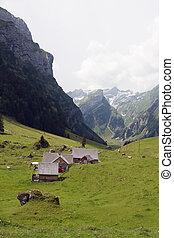 kleine, boerderij, zwitser alpen