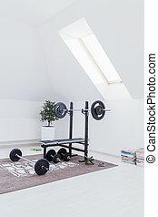 kleine, huis gym