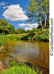 kleine, rivier, boompje, bank, tegenoverstaand