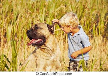kleiner junge, mit, großer hund