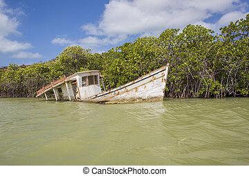 kleines fischerboot, moored, in, punta, gallinas