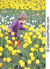 kleines mädchen, auf, feld, von, tulpen
