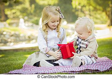 kleines mädchen, gibt, sie, baby, bruder, a, geschenk, an, park