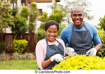 kleingarten, arbeitende , paar, amerikanische , daheim, afro