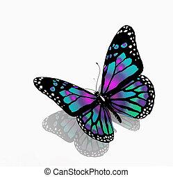 kleur, blauwe achtergrond, vrijstaand, vlinder, witte