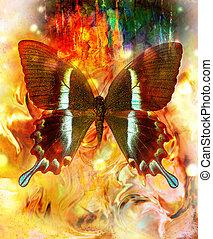 kleur, gemengd, abstract, black , vlinder, sinaasappel, illustratie, gele achtergrond, milieu