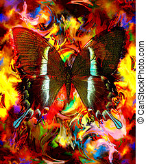 kleur, gemengd, abstract, vlinder, sinaasappel, illustratie, gele achtergrond, milieu, rood
