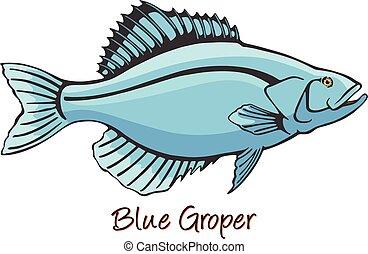 kleur, grouper, illustratie