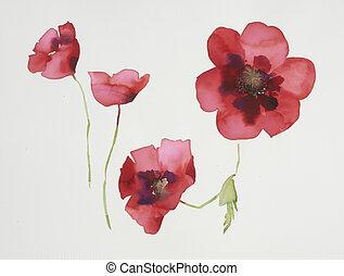 kleur, watercolor, bloemen, illustratie, verf