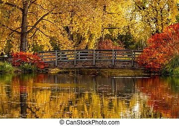 kleuren, buiten, park, herfst