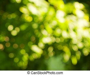 kleuren, groen wit, achtergrond