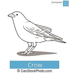kleuren, kraai, boek, vector, leren, vogels