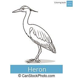 kleuren, reiger, boek, vector, leren, vogels