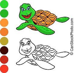 kleuren, schildpadden, book.