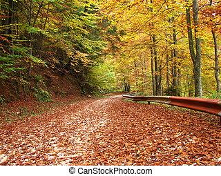 kleuren, van, herfst