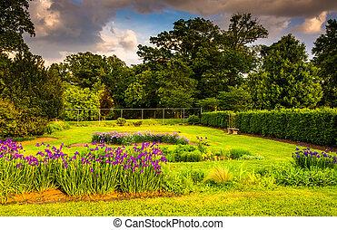 kleurrijke bloemen, in, een, tuin, op, druid, heuvel, park,...