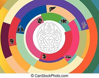 kleurrijke, cirkel