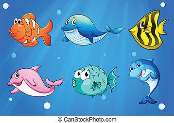 kleurrijke, en, het glimlachen, vissen, onder, de, zee