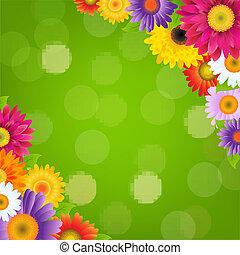 kleurrijke, gerbers, bokeh, groene, bloemen, grens