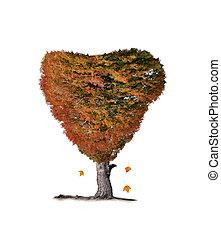kleurrijke, herfst, boompje