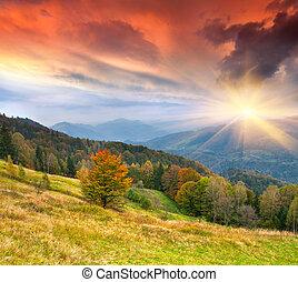 kleurrijke, herfst landschap, in de bergen