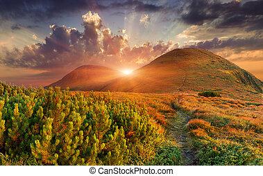 kleurrijke, herfst landschap, in, de, bergen., zonopkomst