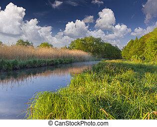kleurrijke, lente, landscape, op, de, nevelig, rivier
