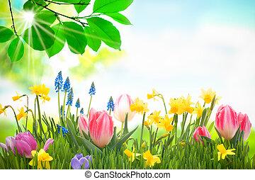 kleurrijke, lentebloemen