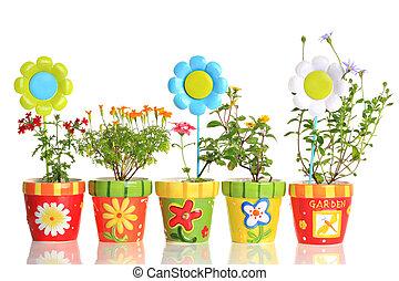 kleurrijke, potten, met, mooi, bloemen