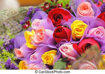 kleurrijke, roos