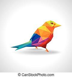 kleurrijke, vogel, illustratie