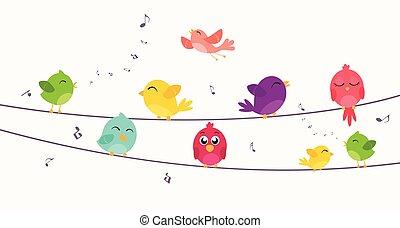 kleurrijke, vogels, zittende , op, draad