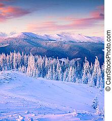 kleurrijke, winter, zonopkomst, in, bergen.