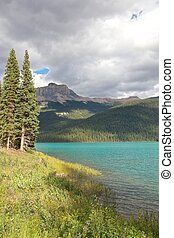 kleurrijke, yoho nationaal park, meer, oevers, smaragd, firs