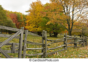 klieven spoorstaaf, omheining, in, herfst