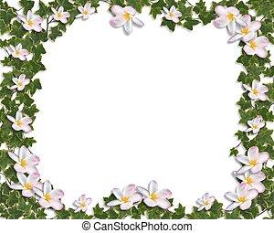 klimop, en, plumeria, floral rand, uitnodiging