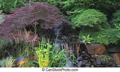 klon, drzewa, przez, wodospad